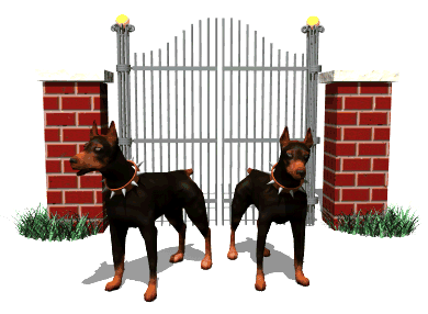Dobermans guarding gate